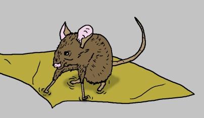 mousecution 2