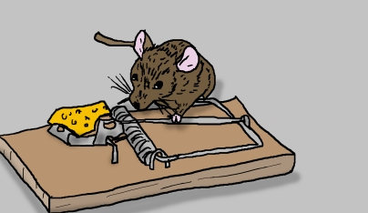 mousecution 3