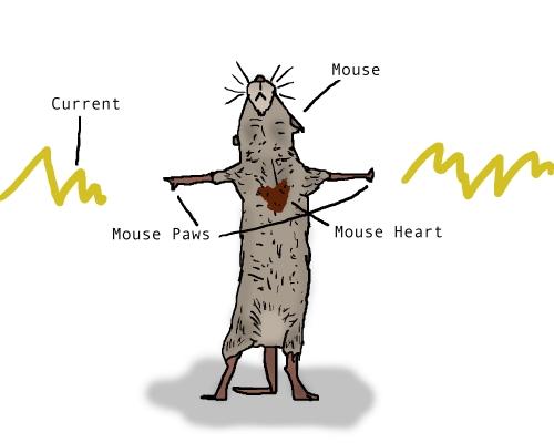 mousecution 6